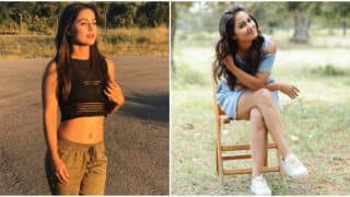 After Khatron Ke Khiladi Season 8, Will Hina Khan Be A Part Of Big Boss 11?