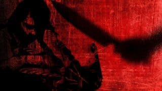 Delhi: Domestic Help Kills Female Employer, Makes Chilling Confession Saying She Was Pressuring Him For Sex