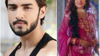 Pehredaar Piya Ki 2: Khatron Ke Khiladi 8 Finalist Shantanu Maheshwari To Not Romance Tejaswi Prakash On The Show