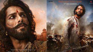 Shahid Kapoor As Maharawal Ratan Singh In Padmavati Will Amaze You