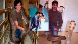 Heartbroken Man Commits Suicide By 'Allowing Deadly Pet Black Mamba to Bite Him': YouTuber Live Streams Horrific Death Video