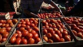 Tomato Price Shoots up to Rs 300 Per kg in Pakistan, Says Won't Import it From India