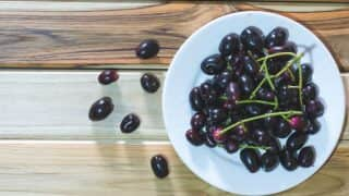 Health Benefits of Jamun: 7 Amazing Benefits of Eating Black Plum