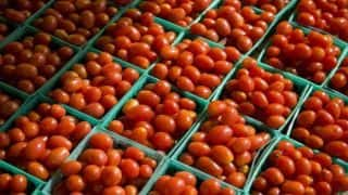 Mumbai: Onion, Tomato Prices go up to Rs 40 Per Kilograms Due to Shortage