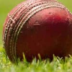TN: 25-year-old Navy Officer Dies Afer Being Hit by Cricket Ball Near Chennai Port