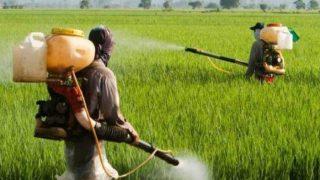 कृषि मंत्री ने बताया-2015 में हर दिन 23 किसानों ने की आत्महत्या, उसके बाद का डेटा आधिकारिक नहीं