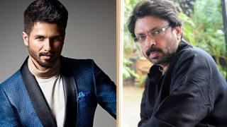 Shahid Kapoor Wants A Padmavati Trailer Cut For Him After Getting Overshadowed By Ranveer Singh?