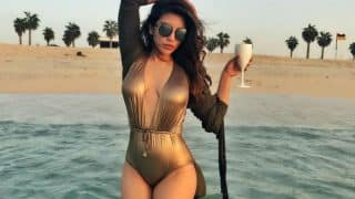 Shama Sikander Sizzles in A Hot, Golden Bikini and We Just Can't Keep Calm