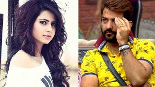 Bigg Boss 11: Sargun Mehta And Manu Punjabi To Enter Salman Khan's Show?