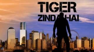 Salman Khan-Katrina Kaif Starrer Tiger Zinda Hai Trailer To Release In November First Week?