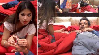 Bigg Boss 11: Puneesh Sharma Jealous Of A Ring On Bandgi Kalra's Finger?