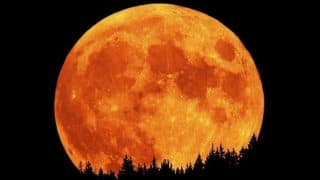 Hunter's Moon 2017: Reason Behind The Name For The Full Moon That Will Occur This Week