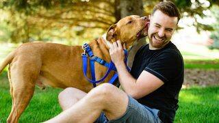Dog Owners Live a Longer and Healthier Life According To Study