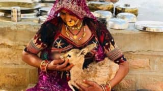 Vikas Khanna Shares Picture of Woman From Bishnoi Community Breastfeeding Baby Deer
