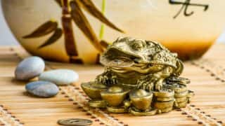 Attract Money Into Your Home: 5 Simple Feng Shui Tips to Attract Wealth Into Your Home