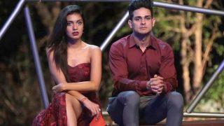 Bigg Boss 11: Hina Khan's Statement About Priyank Sharma's Relationship Shocks Girlfriend Divya Agarwal
