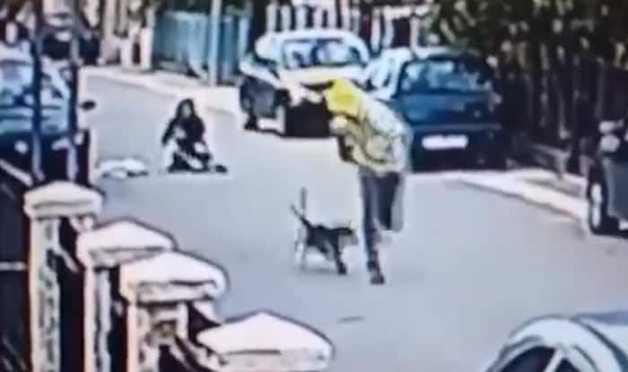 Stray dog comes to woman's rescue as man tries to steal handbag