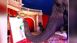 Indian Elephant's Paintings Sold At An Auction In Hungary