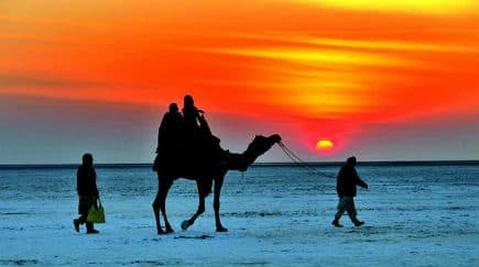 Best Winter Holiday Destinations in Gujarat for 2017