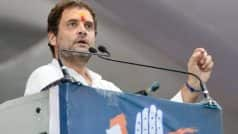 20 नवंबर को कांग्रेस वर्किंग कमेटी की बैठक, गुजरात चुनाव से पहले राहुल बन सकते हैं पार्टी अध्यक्ष