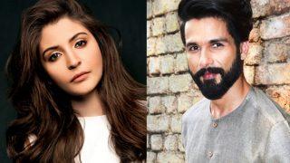 Not Katrina Kaif But Anushka Sharma To Play Shahid Kapoor's Heroine In Batti Gul Meter Chalu - Exclusive