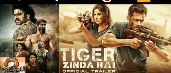Tiger Zinda Hai Crosses Rs 250 Crore Mark Here Is The: Pic Tiger Zinda Hai