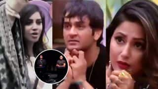 Bigg Boss 11 December 17 Preview: Hina Khan, Vikas Gupta, Arshi Khan Fight Over Hiten Tejwani And Priyank Sharma