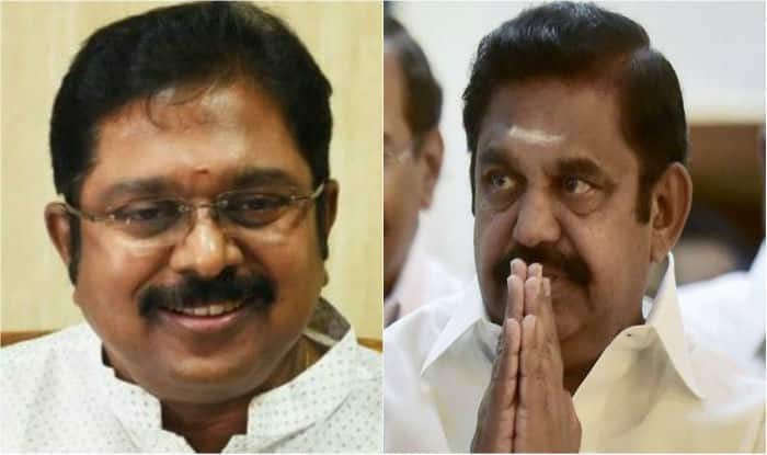 TTV Dhinakaran clinches RK Nagar by