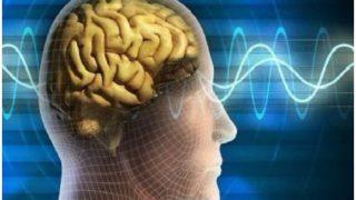 Tips: बढ़ती उम्र के साथ हो सकता है Memory loss, बचना चाहते हैं तो करें ये काम