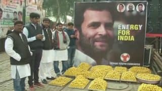 Sweets, Live Band: Celebrations at Congress Headquarters as Rahul Gandhi Takes Charge of Party