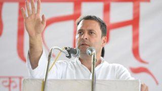 UP निकाय चुनाव में अपने ही गढ़ मे नहीं खुला कांग्रेस का खाता