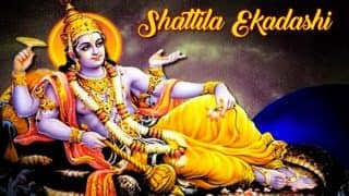 Shattila Ekadashi Vrat 2018: Date, Significance, Muhurat, Tithi and Rituals for Praying to Lord Vishnu on Tilda Ekadashi