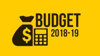 Budget 2018: Fruit Juices, Vegetables to Get Costlier; No Change in Petrol, Diesel Prices