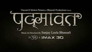 Deepika Padukone - Ranveer Singh - Shahid Kapoor Starrer Padmaavat's New Poster Out