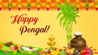 Pongal 2018: Date, Significance, Mythology Related To Tamil Harvest Festival