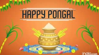 Happy Pongal 2019:  Best Pongal WhatsApp Messages, Facebook Wishes, Greetings And SMS to Wish Your Loved Ones