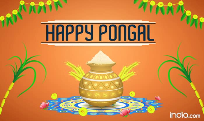 Happy Pongal 2019: Best Pongal WhatsApp Messages, Facebook Wishes, Greetings And SMS to Celebrate the Tamil Harvest Festival