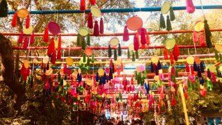 Zee Jaipur Literature Festival Kicks off Amid Fanfare