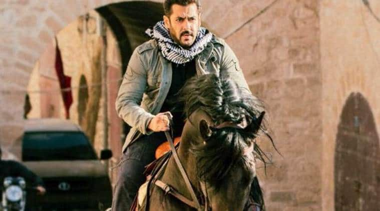 Tiger Zinda Hai: Salman Khan starrer rock-steady at the Box Office