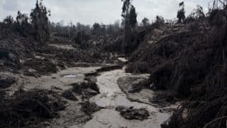 Madhya Pradesh: Three children Buried Alive While Digging Soil in Damoh