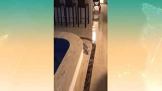 Brazil's Tallest Building Rocked From Side- to-Side by Strong Winds; Water From Jacuzzi Spills Onto Floor of Luxury Apartment (Video)