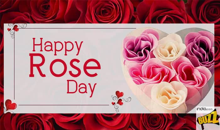 Happy Rose Day 2018 Best Wishes Greetings Whatsapp And