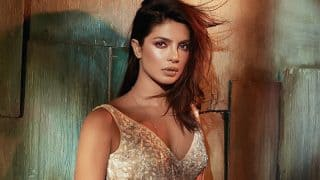 Priyanka Chopra's Decision To Sign Her Next Bollywood Film Depends On Quantico Makers?