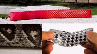Watch This Creepy Crawling Robot Slither Around Like a Snake Using Artificial Snakeskin