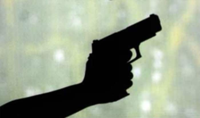 8-year-old girl dies in celebratory firing in Madhya Pradesh.