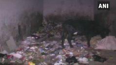 रोना बर्दाश्त नहीं हुआ तो 25 दिन की बच्ची को कलयुगी मां ने कूड़ेदान में फेंका, मौत