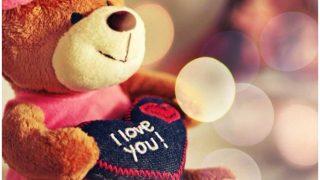 Teddy Day 2019: गर्लफ्रेंड को टेडी गिफ्ट कर कहें I LOVE YOU, उसका भी जवाब होगा यही