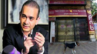 Punjab National Bank Suspends 8 Employees in Rs 11,4000 Crore Nirav Modi Fraud Case