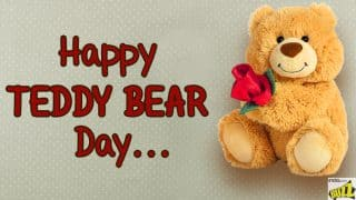 Happy Teddy Day 2018: Best SMS, Wishes, WhatsApp Forwards And Facebook Status to Send to Your Valentine
