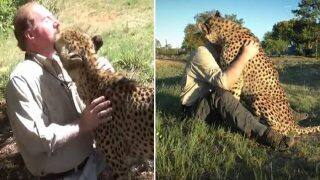 Amazing Video of Cheetah Hugging and Greeting Human Best Friend is Melting Hearts Online